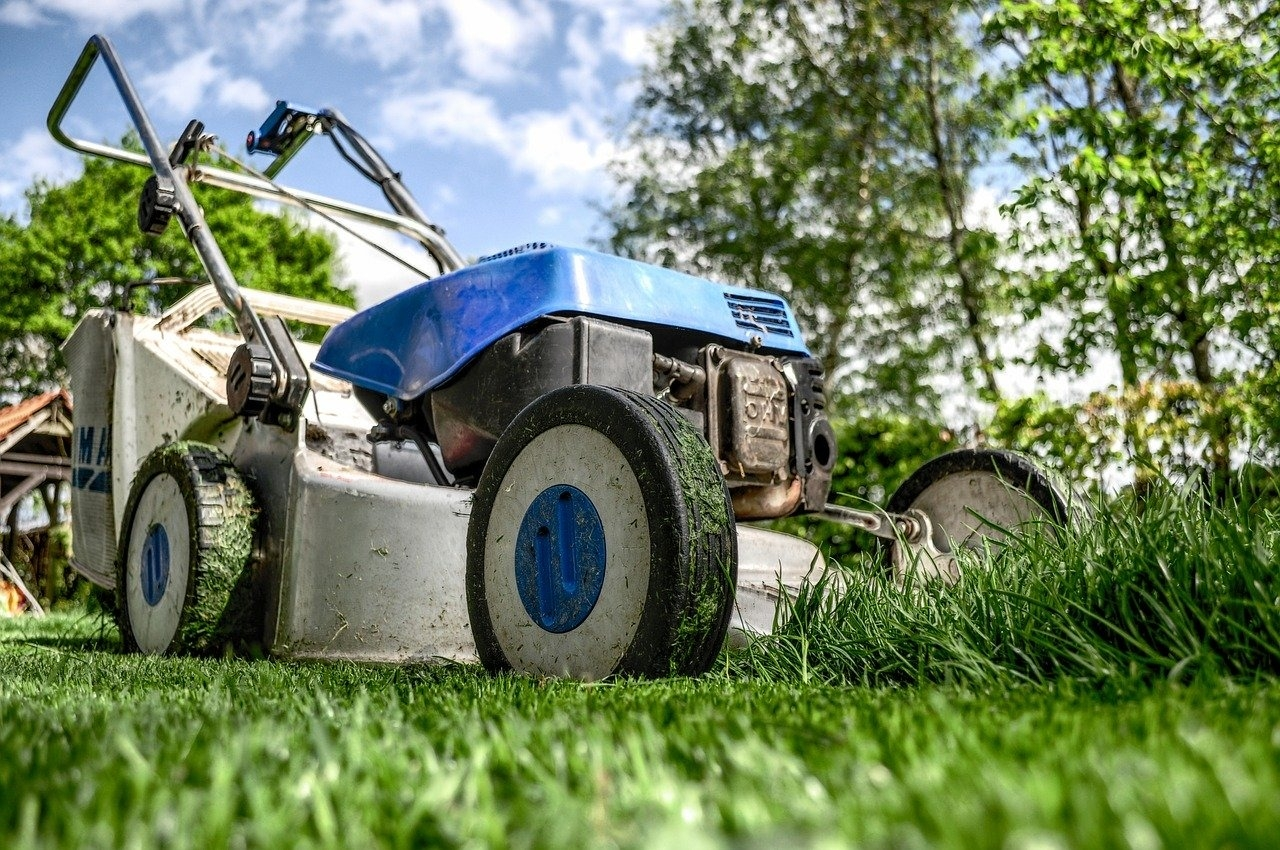 Four steps to prepare your Denver lawn for summer
